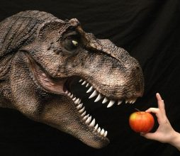 t-rex-mounted-wall-piece-640x533-1